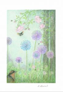 Allium Greeting Card - H.E. Stewart