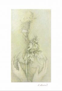 Hands Holding Plant Greeting Card - H.E. Stewart