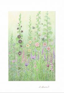 Hollyhocks Greeting Card Set - H.E. Stewart