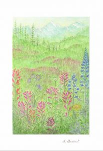 Mountain Meadow Greeting Card Set - H.E. Stewart